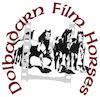 Dolbadarn Film Horses