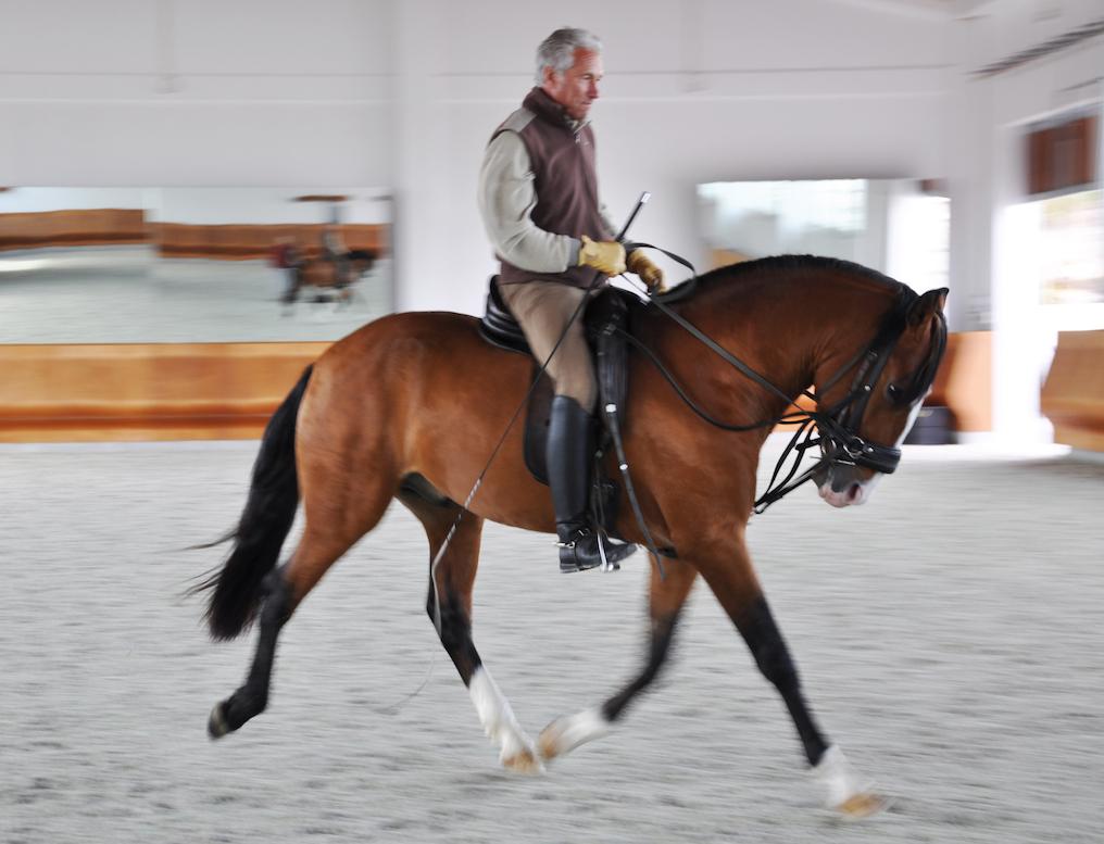 anton riding