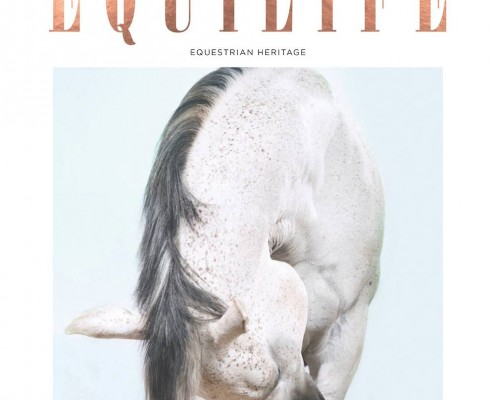 Equilife World