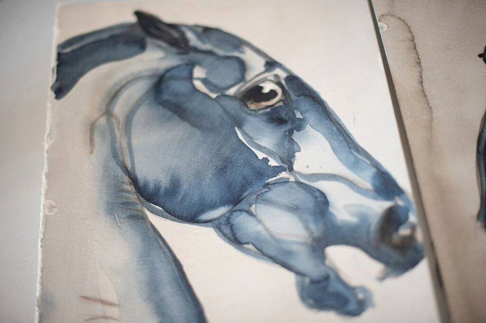 equine artwork