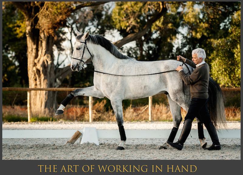 Nuno Cavaco working in hand